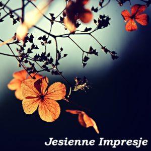 Koncert Jesienne Impresje 2013