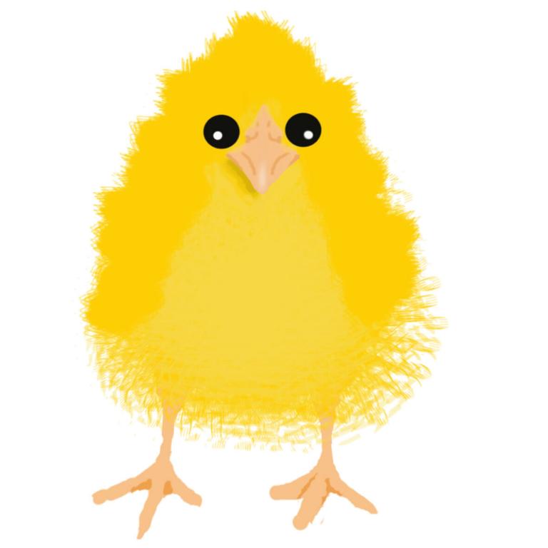 Kurczak wielkanocny, autor projektu Jan Gawlik