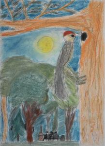 Krzysztof Kowalczyk, 8 lat, Dom Kultury Stokłosy, Echo w parku