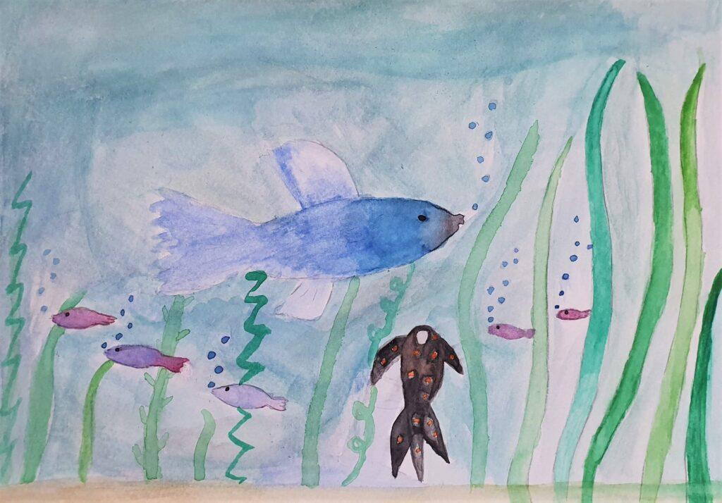 Laura Buławka, 10 lat, Szkoła Podstawowa nr 373, Rybki w akwarium