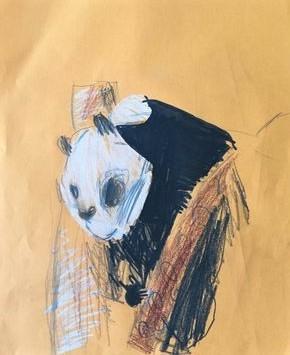 Sebastian Piworowicz, 7 lat, Szkoła Podstawowa nr 133